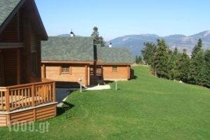 Kedros Village_best prices_in_Hotel_Central Greece_Evritania_Karpenisi
