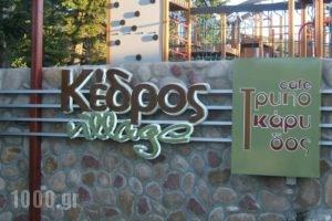 Kedros Village_best deals_Hotel_Central Greece_Evritania_Karpenisi