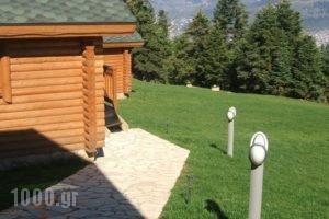 Kedros Village_lowest prices_in_Hotel_Central Greece_Evritania_Karpenisi