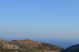 Villa Mistatos_best deals_Villa_Crete_Lasithi_Makrys Gialos