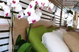 Svea Hotel - Adults Only_travel_packages_in_Dodekanessos Islands_Rhodes_Rhodesora