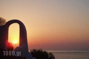Ilidi Rock Aparts-Suites and Studios_best prices_in_Hotel_Dodekanessos Islands_Tilos_Tilos Chora