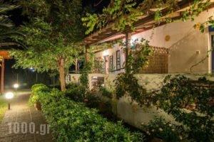 Sikia Blue Rooms_travel_packages_in_Macedonia_Halkidiki_Haniotis - Chaniotis