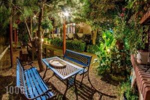 Sikia Blue Rooms_holidays_in_Room_Macedonia_Halkidiki_Haniotis - Chaniotis