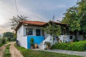 Sikia Blue Rooms_best deals_Room_Macedonia_Halkidiki_Haniotis - Chaniotis