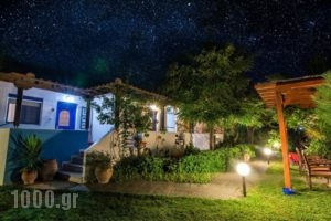 Sikia Blue Rooms_lowest prices_in_Room_Macedonia_Halkidiki_Haniotis - Chaniotis
