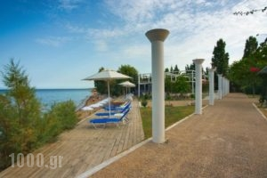 Logga Beach_lowest prices_in_Hotel_Thessaly_Magnesia_Pilio Area