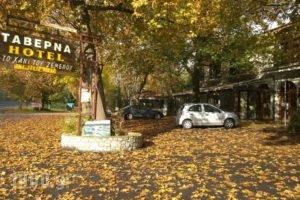 Hani Zemenou_travel_packages_in_Central Greece_Viotia_Arachova