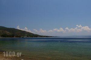 Vergina_best deals_Hotel_Central Greece_Evia_Edipsos