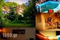 Alkyonis Hotel & Spa in Aridea, Pella, Macedonia