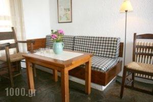 Proimos Maisonnettes_holidays_in_Hotel_Crete_Chania_Gerani