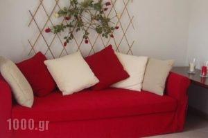 Sun Residence_best deals_Hotel_Macedonia_Halkidiki_Haniotis - Chaniotis