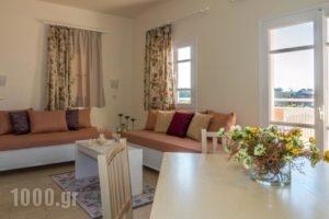 Manolis Apartments_best deals_Apartment_Crete_Heraklion_Malia