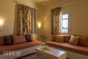 Manolis Apartments_lowest prices_in_Apartment_Crete_Heraklion_Malia