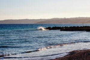 Rosa'S Beach Studios_lowest prices_in_Hotel_Ionian Islands_Kefalonia_Vlachata