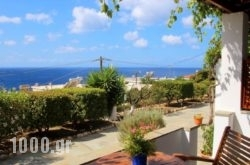 Studios Marfo in Andros Chora, Andros, Cyclades Islands