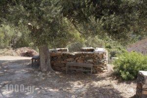 Zarka Villas_best prices_in_Villa_Central Greece_Evia_Aliveri