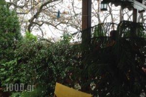 I Folia_holidays_in_Hotel_Thessaly_Magnesia_Volos City