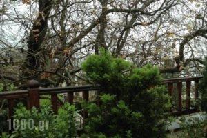 I Folia_accommodation_in_Hotel_Thessaly_Magnesia_Volos City