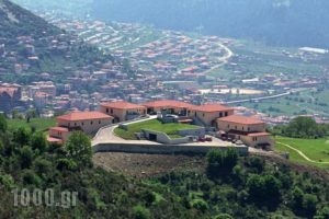 Avaris Hotel_accommodation_in_Hotel_Central Greece_Evritania_Voutyro