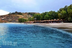 Porto Koundouros Villas_accommodation_in_Villa_Cyclades Islands_Kea_Koundouros