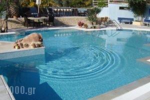 Meraki Apartments and Studios_holidays_in_Apartment_Peloponesse_Argolida_Tolo