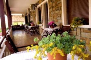 Kallinikos Guesthouse_lowest prices_in_Hotel_Macedonia_Pella_Aridea