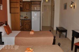 Mazis Apartments_best prices_in_Apartment_Ionian Islands_Corfu_Agios Gordios