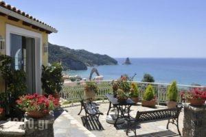 Mazis Apartments_accommodation_in_Apartment_Ionian Islands_Corfu_Agios Gordios