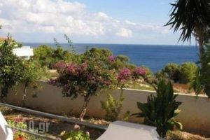 Alexandros_travel_packages_in_Sporades Islands_Skopelos_Skopelos Chora