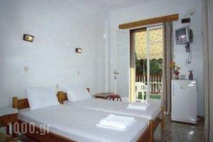 Alexandros_best deals_Hotel_Sporades Islands_Skopelos_Skopelos Chora