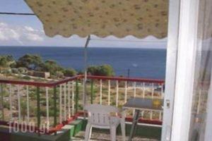Alexandros_lowest prices_in_Hotel_Sporades Islands_Skopelos_Skopelos Chora