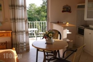 Irene Villas_holidays_in_Villa_Ionian Islands_Corfu_Arillas
