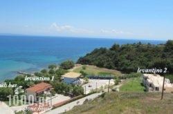 Levantino Studios & Apartments in  Laganas, Zakinthos, Ionian Islands