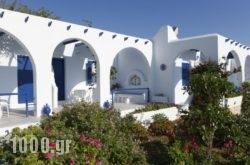 Bungalows Marina in Naousa, Paros, Cyclades Islands