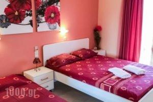 Athina Studios_holidays_in_Hotel_Ionian Islands_Zakinthos_Zakinthos Chora