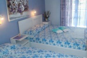 Athina Studios_best prices_in_Hotel_Ionian Islands_Zakinthos_Zakinthos Chora