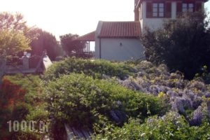 Vatellis Villas_travel_packages_in_Sporades Islands_Alonnisos_Alonissosora