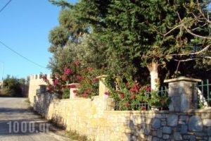 Vatellis Villas_holidays_in_Villa_Sporades Islands_Alonnisos_Alonissosora