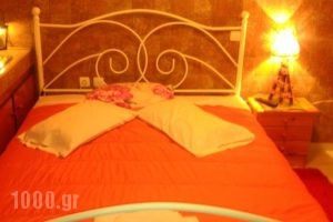 Guesthouse Chrysa_best prices_in_Hotel_Central Greece_Viotia_Arachova