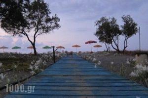 Baladinos Apartments_holidays_in_Apartment_Crete_Chania_Tavronit's