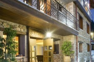 Xenonas Iresioni_holidays_in_Hotel_Central Greece_Viotia_Arachova