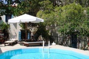 Villa Kynthia_holidays_in_Villa_Crete_Rethymnon_Mylopotamos