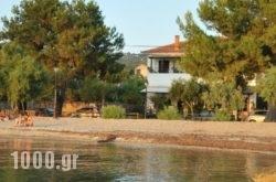Zouzoula House in Agios Lavrendios , Magnesia, Thessaly