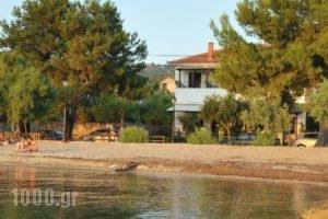 Zouzoula House_accommodation_in_Hotel_Thessaly_Magnesia_Agios Lavrendios