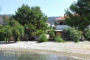 Zouzoula House_best deals_Hotel_Thessaly_Magnesia_Agios Lavrendios