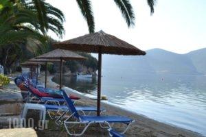 Akti Panagia_holidays_in_Hotel_Central Greece_Fthiotida_Stylida