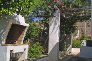 Villa Morfia_best deals_Villa_Cyclades Islands_Paros_Paros Chora