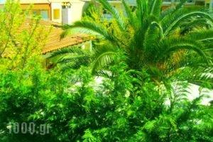 Sivilla_travel_packages_in_Macedonia_Halkidiki_Kassandreia