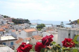 Kerasies Studios_best deals_Hotel_Sporades Islands_Alonnisos_Patitiri